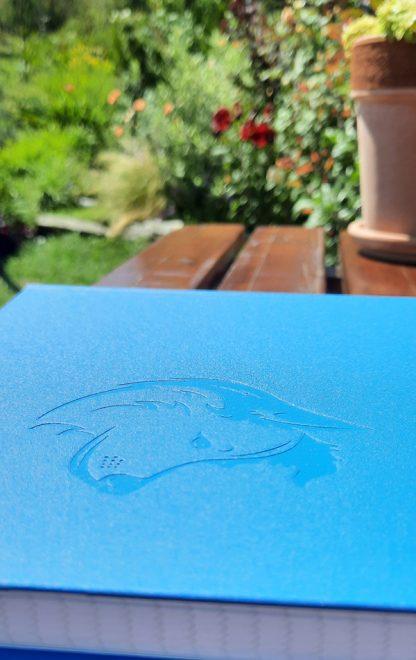 caiet albastru